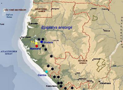 epiplatys_ansorgii-dkg-map.jpg